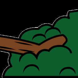 Zmiany dotyczące wycinki drzew lub krzewów