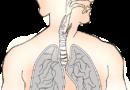 """Zapraszamy na bezpłatne badanie płuc w ramach programu """"Wczesnego wykrywania raka płuca"""""""
