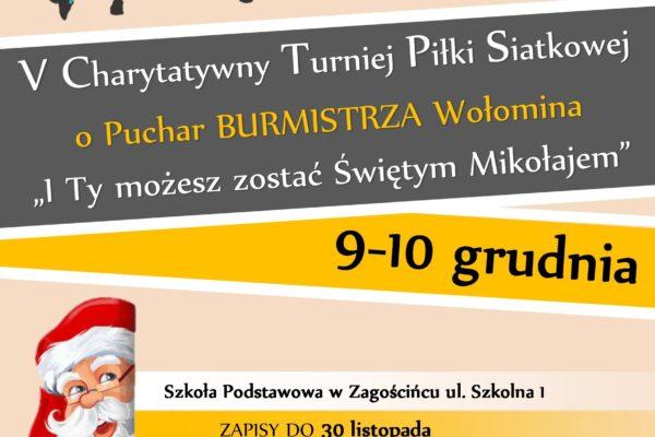 V Charytatywny Turniej Piłki Siatkowej o Puchar Burmistrza Wołomina już za nami!