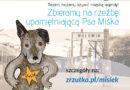 Zbieramy na rzeźbę psa Miśka – ożywiamy miejską legendę!