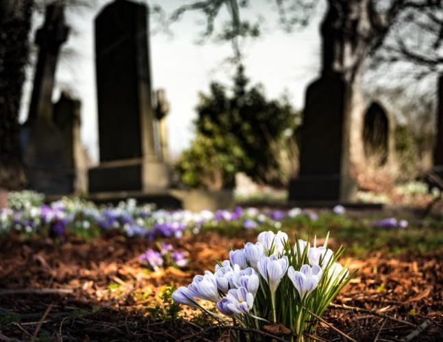 Otwarcie cmentarza w Wołominie