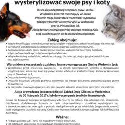 Zapraszamy Mieszkańców Gminy Wołomin na darmową sterylizację psów i kotów