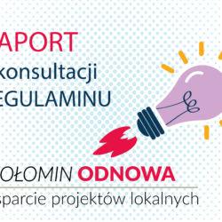 """Raport z konsultacji społecznych """"Wołomin odnowa: wsparcie projektów lokalnych"""""""