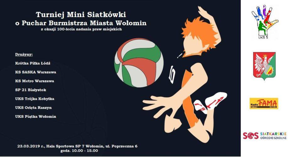 Turniej mini siatkówki o Puchar Burmistrza Wołomina