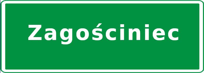 Koncepcja zagospodarowania terenu - ul. Piastowska w Zagościńcu
