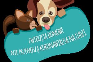 Zwierzęta domowe nie przenoszą koronawirusa