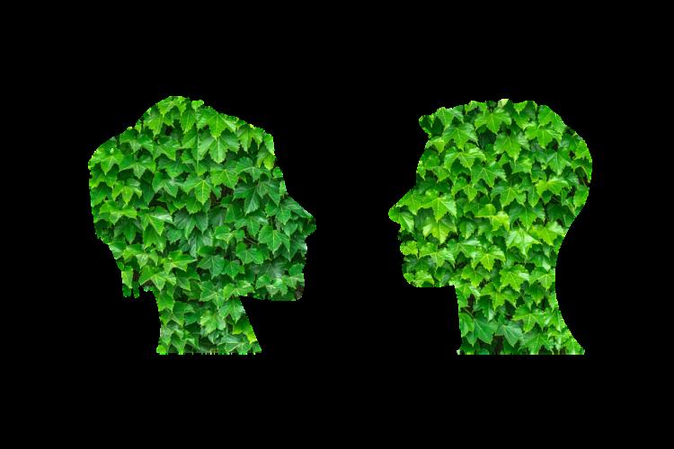 Rusza nabór do Młodzieżowej Rady Ekologicznej