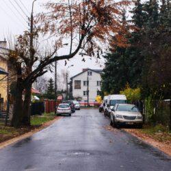 Droga asfaltowa jesienią