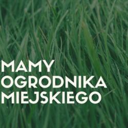 zdjęcie przedstawia trawę a na niej napis: Mamy Ogrodnika Miejskiego