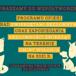 """Zaproszenie do konsultacji projektu """"Programu opieki nad zwierzętami bezdomnymi oraz zapobiegania bezdomności zwierząt na terenie gminy Wołomin na 2021 r."""""""