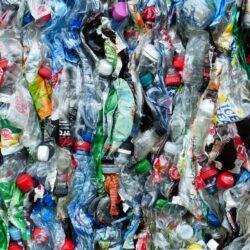 plastikowe butelki śmieci odpady