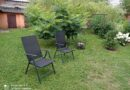 ogródek z zieloną trawą
