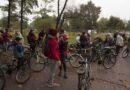 grupa rowerzystów w lesie